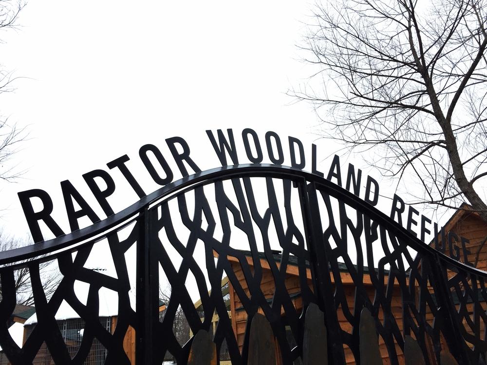 Raptor Woodland Refuge