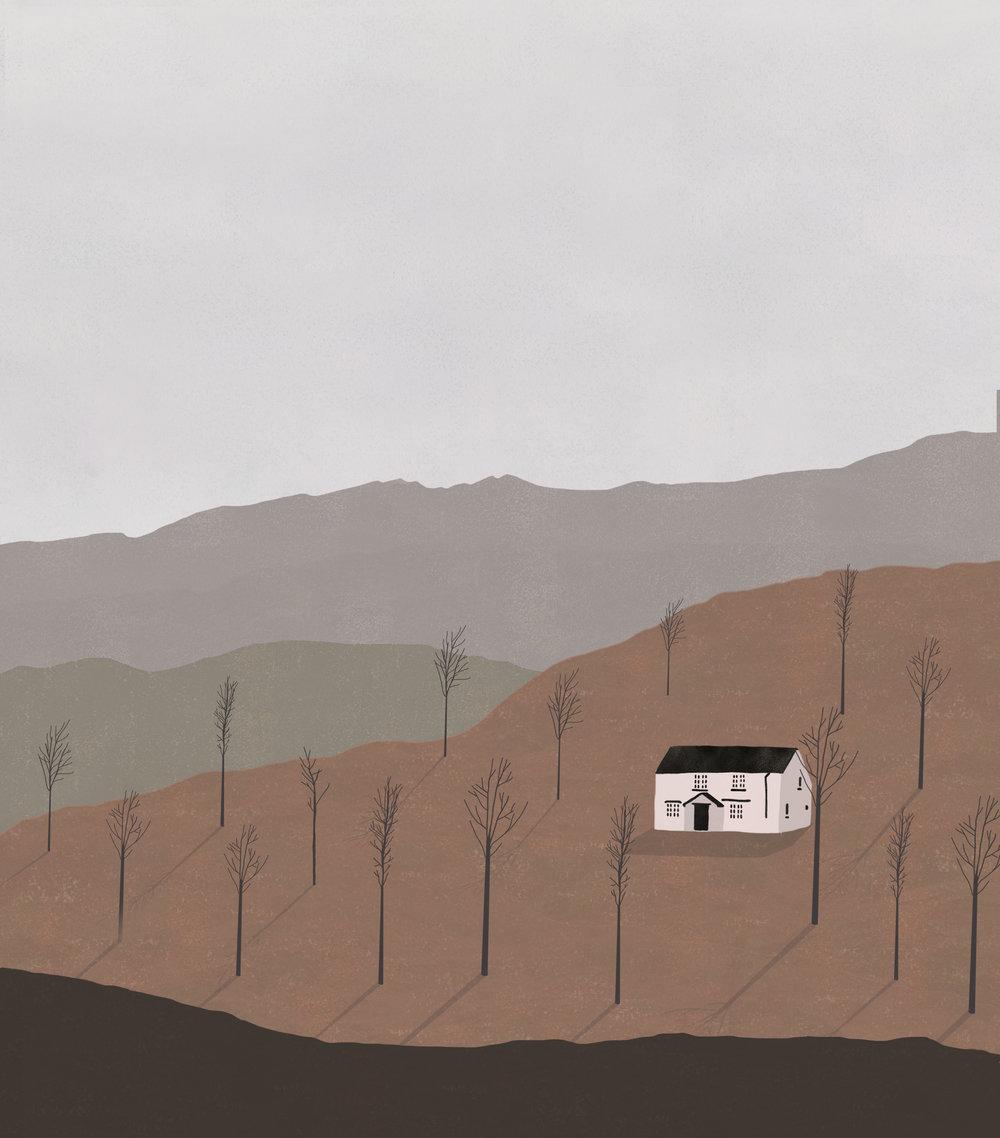 cottages7.jpg