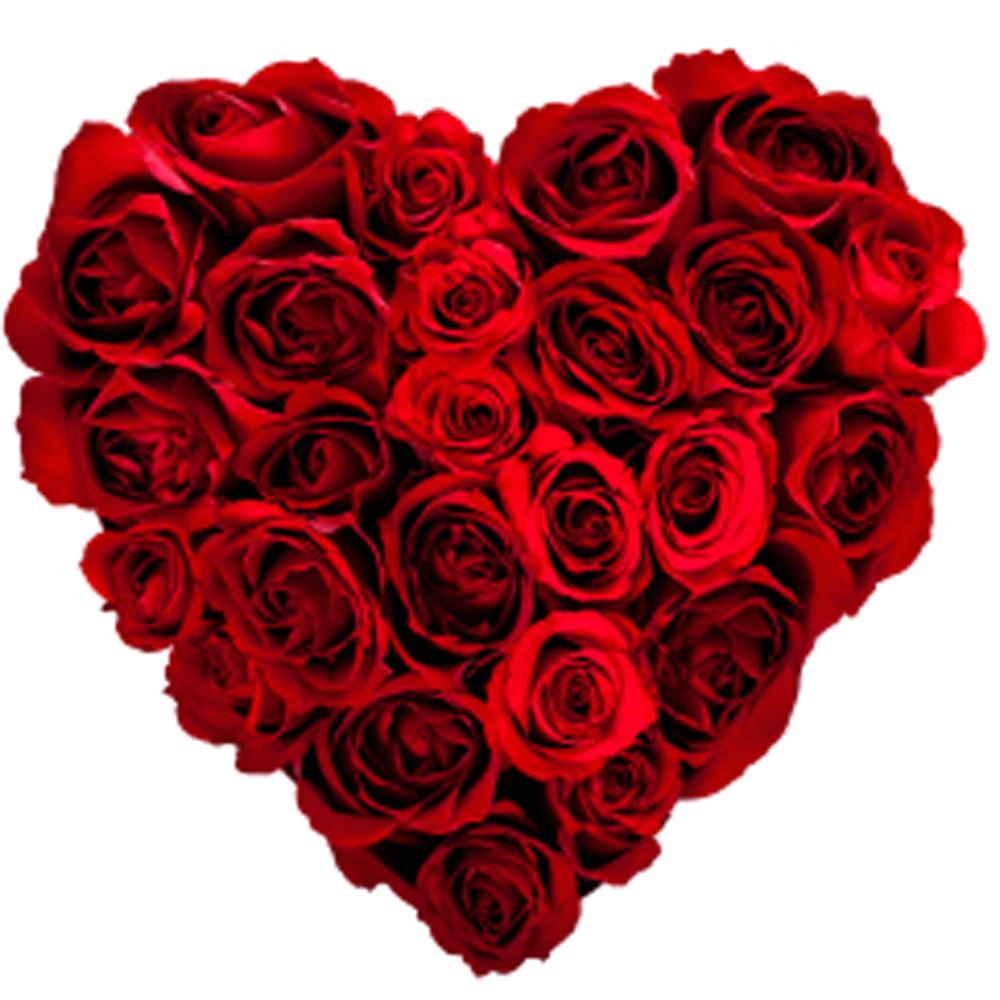 heart-roses1.jpg