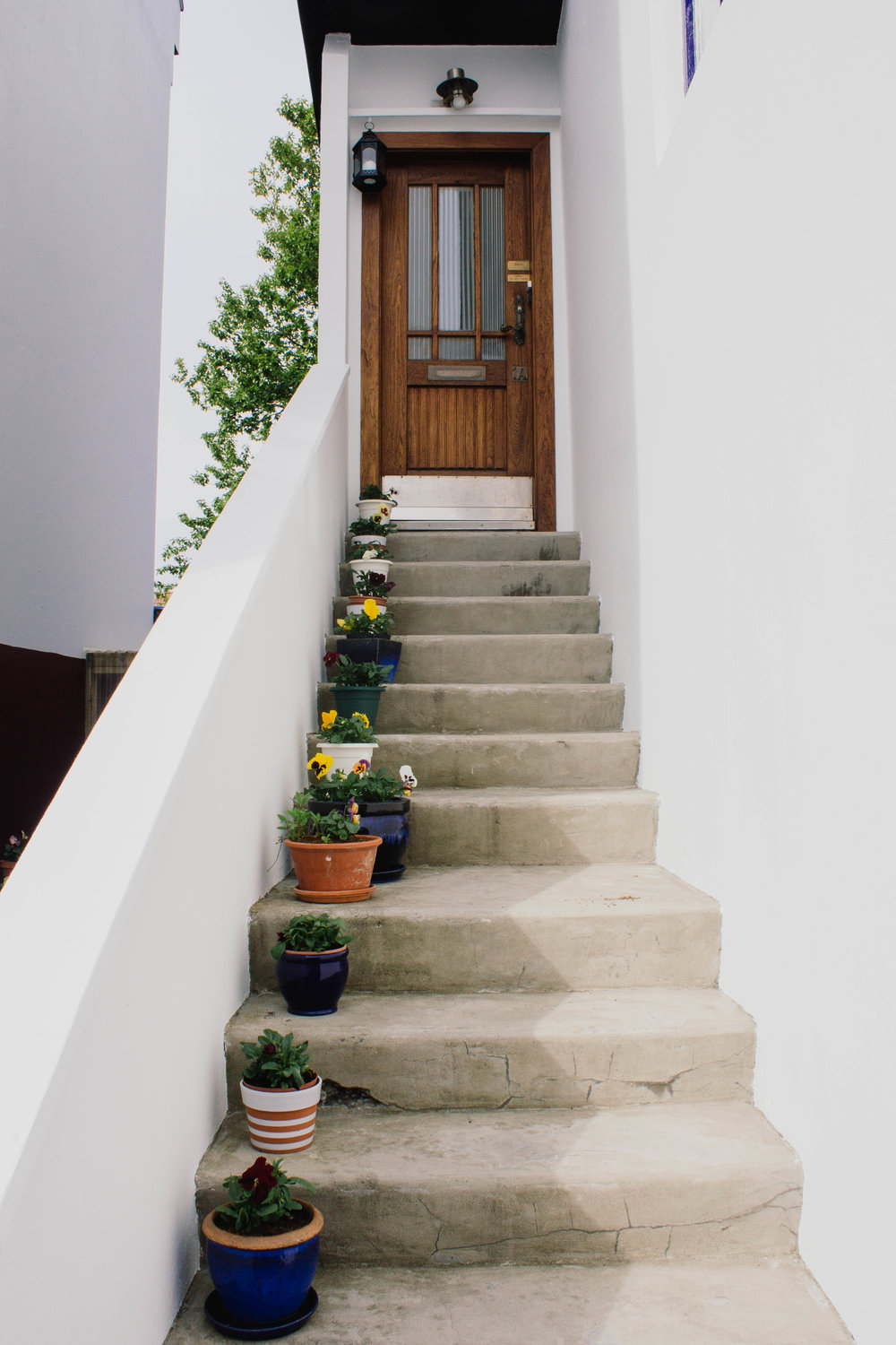 So many cute, plant-filled entryways