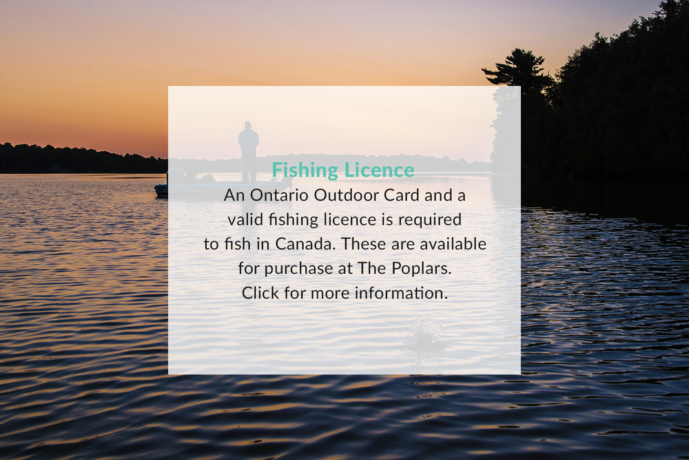 Poplars_Fishing_Licence
