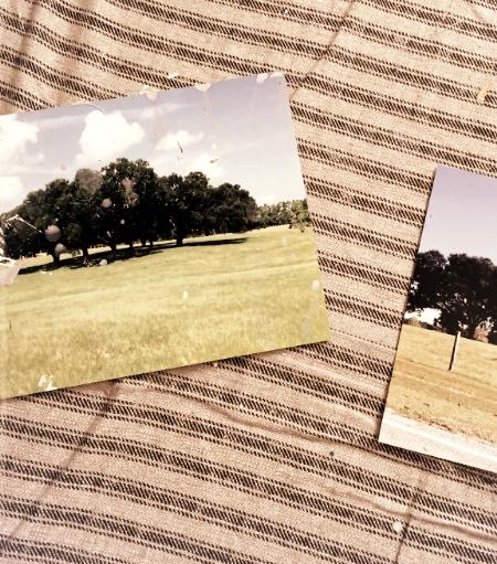 original photos on my studio floor