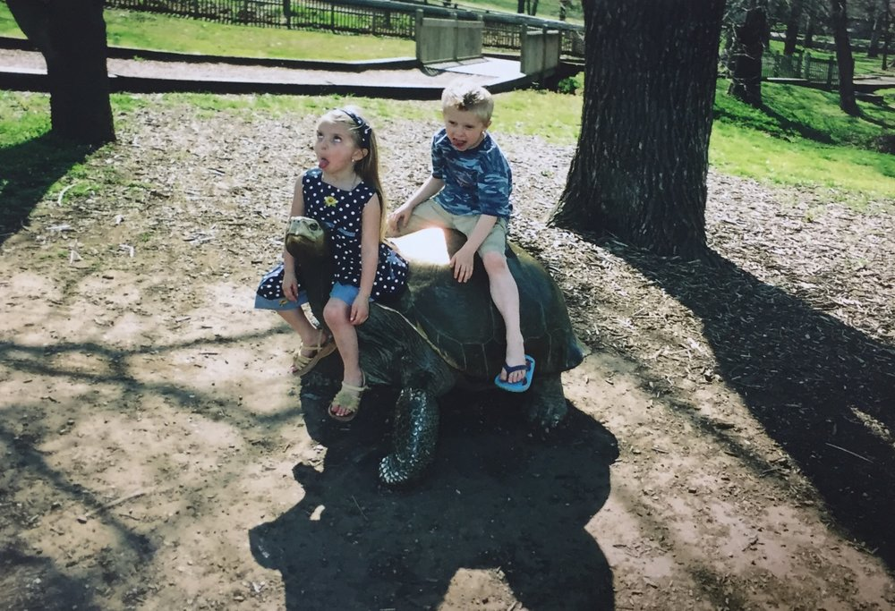 My favorite memory is going to the zoo with my family.