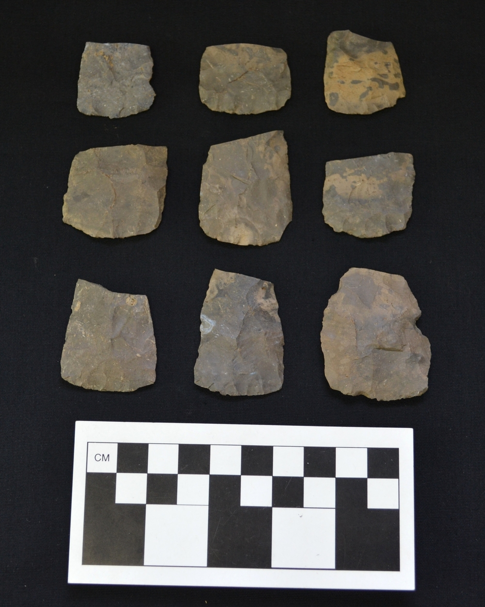 A sample of Onondaga chert, Meadowood cache blade fragments from the Esmond 2 site.