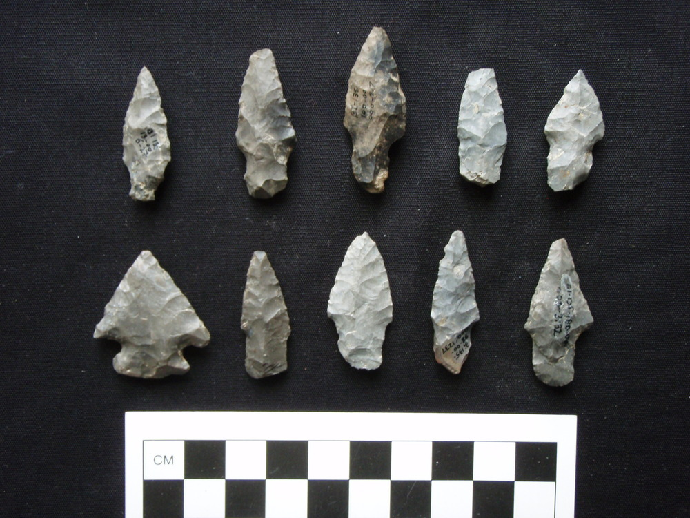 Lamoka points and an untyped corner-notched point from a site in central New York State.  Photo Credit: Ed Curtin