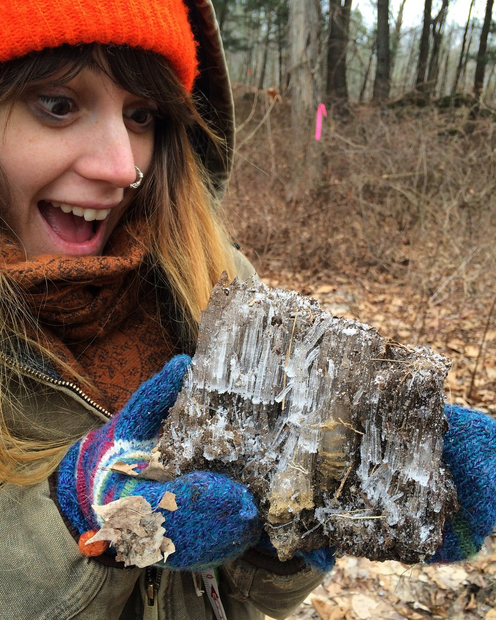 Meadow Coldon discovers evidence of cryoturbation, January 2016