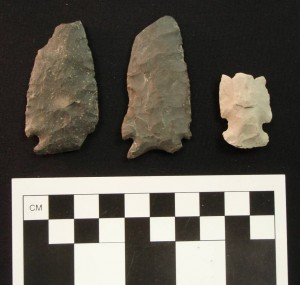 Left to right: Kirk Corner-Notched point, Palmer point with deeply concave base similar to Hardaway-Dalton, and possible early side-notched point. All from one small site in New Baltimore