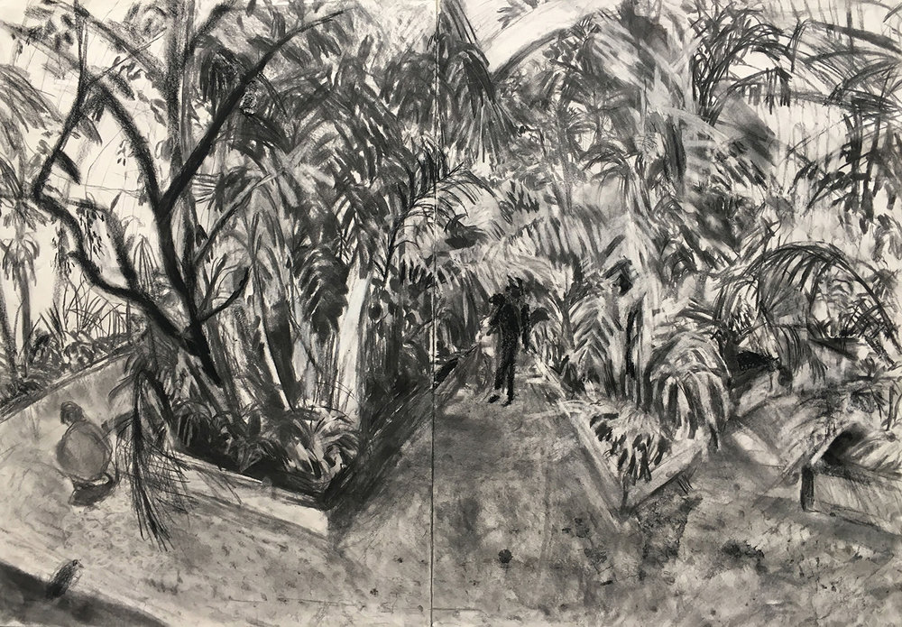 Palmhouse Charcoal on paper, 80x60cm