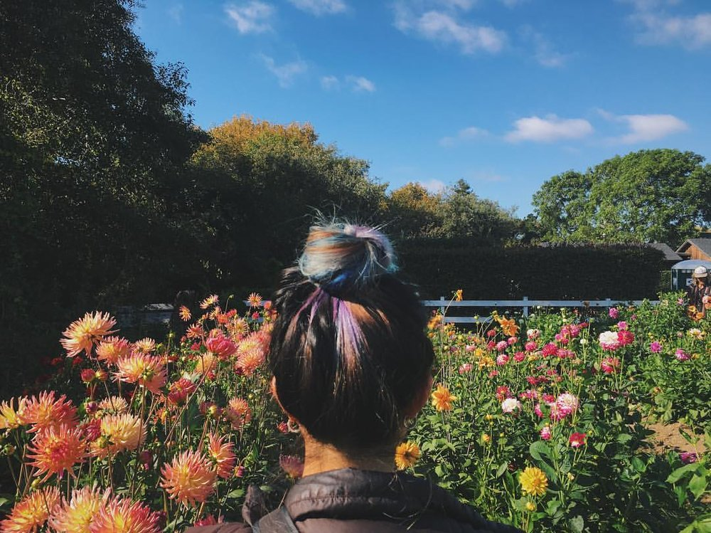 I had no idea how colorful my hair looks from the back. I fit right in with the flowers. Photo credit: Kaitlyn Miller.
