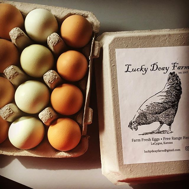 When your #holisticplannedgrazing students bring you gorgeous eggs like these, it's your Lucky Deay! #holistichealth  #holisticnutrition #holisticlife #farmerlife #farmersmarkets #multispeciesgrazing #holisticmanagement #farmgoals @savoryinstitute