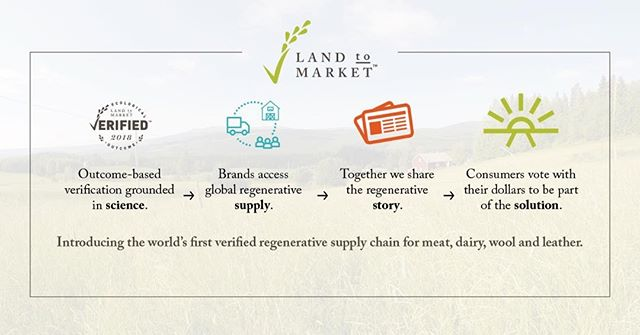We're proud to be working with @SavoryInstitute to create the world's first verified regenerative supply chain. See how we're connecting consumers with brands and producers committed to regenerating land.  Learn more about #LandtoMarket: savory.global/landtomarket  #holisticmanagement #farming #ranching #agriculture #regenerativeagriculture