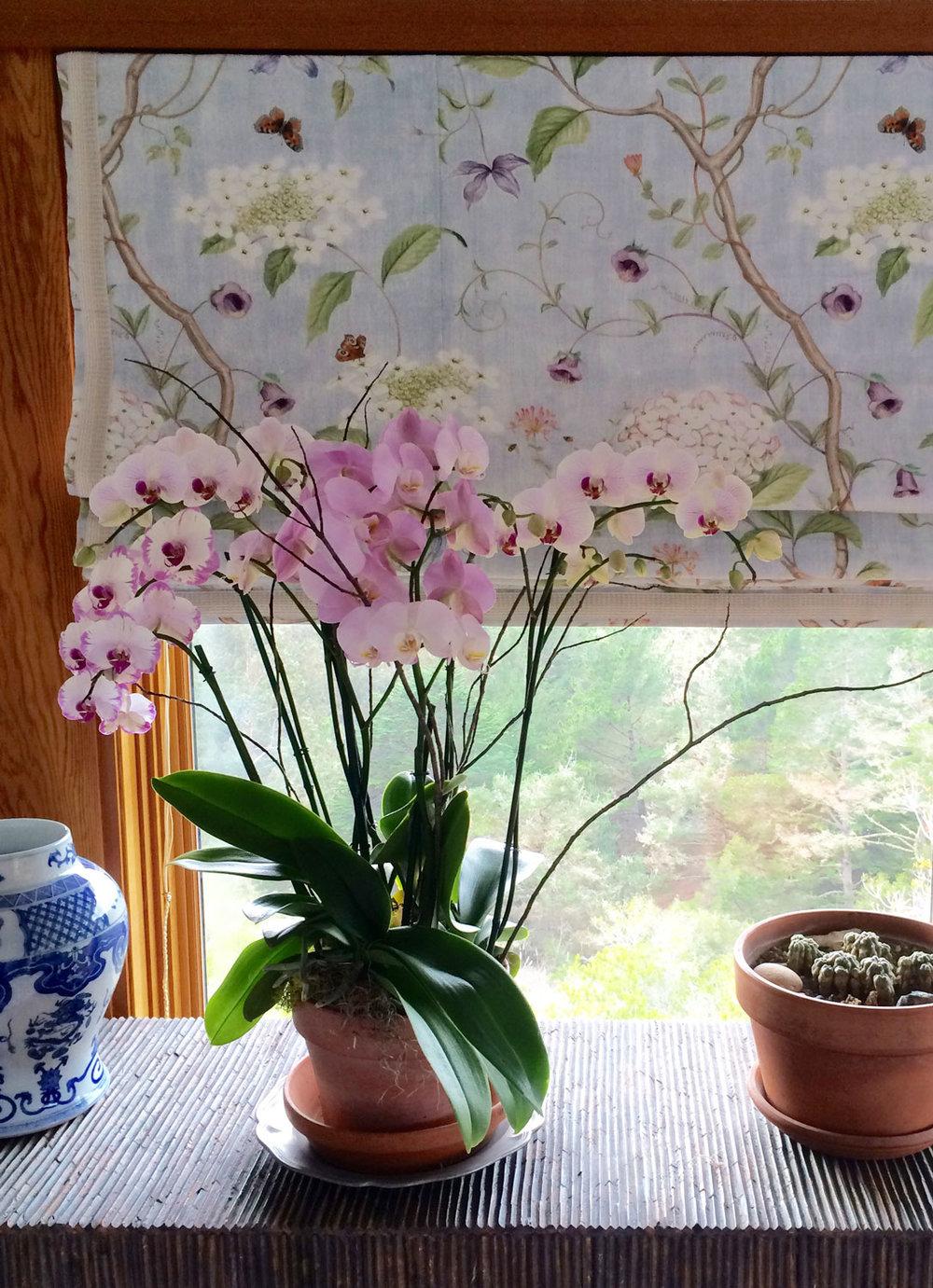 Flowers-LR.jpg