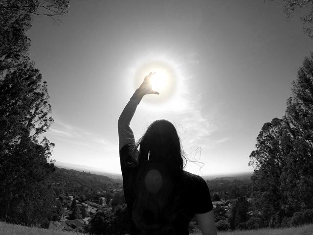 EVOL_SUN.jpg