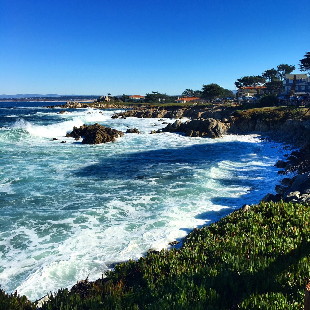 The view from Lover's Point Park in Pacific Grove is aboslutely breathtaking.