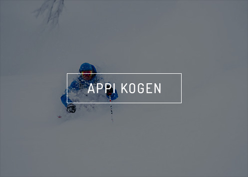 Deep Powder at Appi Kogen Ski Resort in Japan