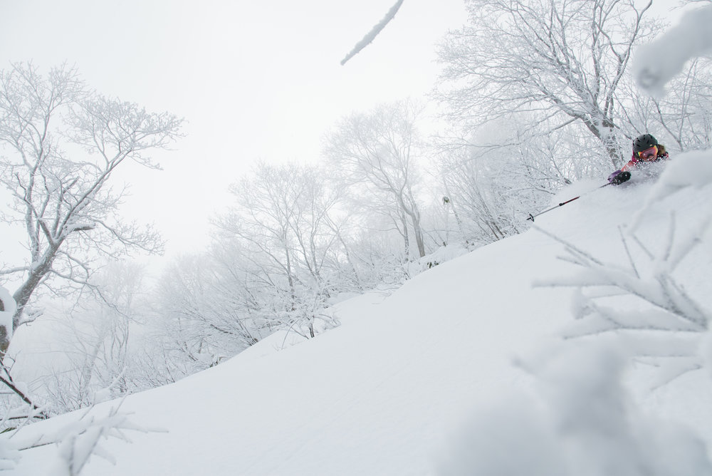 SKI + YOGA RETREAT - HAKUBA VALLEY   //   JANUARY 28-FEBRUARY 3