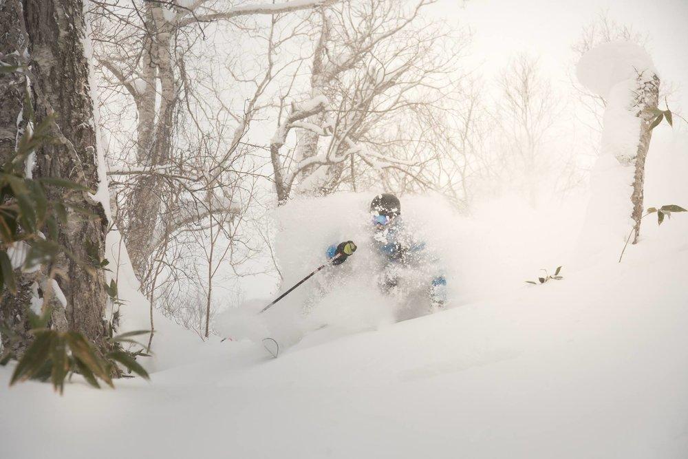 Nozawa Onsen ski