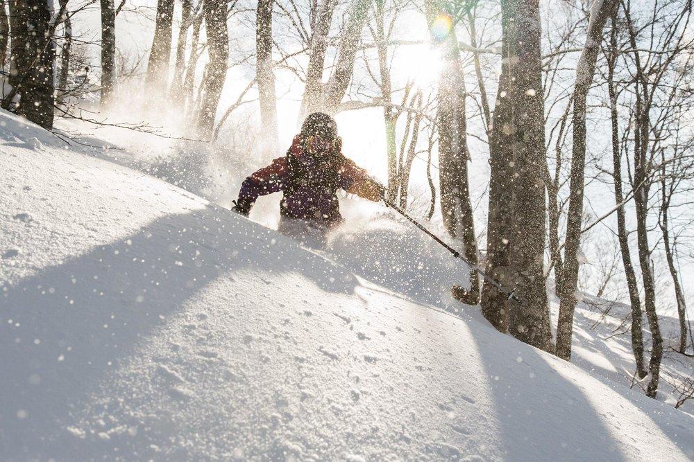 Ski Nozawa