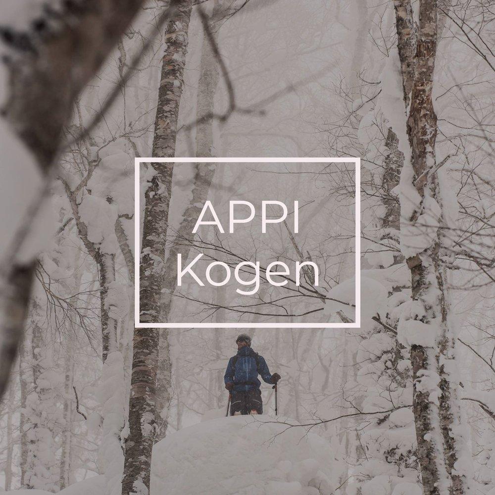 Appi Kogen is an all season resort in Japan that gets endless powder in ski season