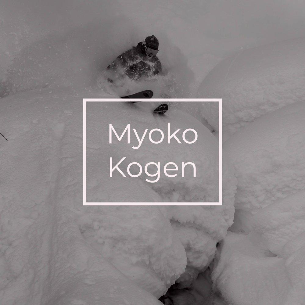 Myoko Kogen Snowlocals.jpg