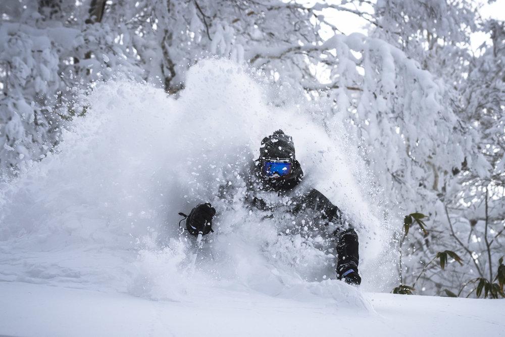 February conditions snowlocals