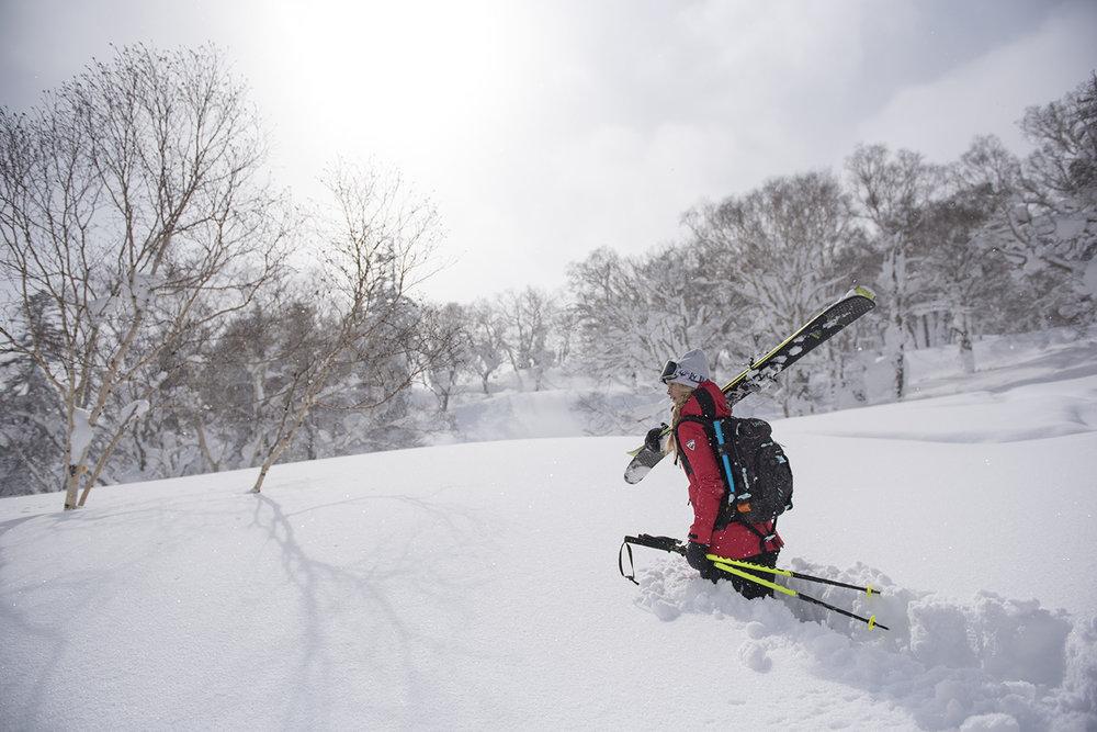 Snowlocals Niseko
