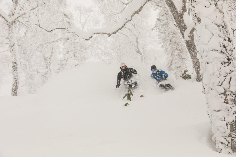 Brother ski snowlocals