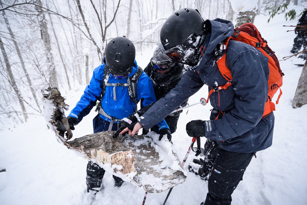 Explore More - Outdoor onsens, indoor onsens, sushi masters, ramen legends, ancient temples,bustling Sapporo city sights, and secluded ski areas. Our Hokkaido package is a trip we will never get tired of.