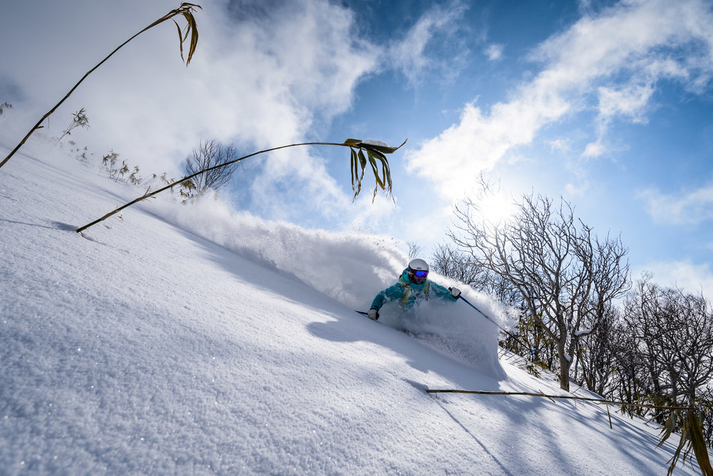 Andrew Strain photo of blue sky pow at Moiwa