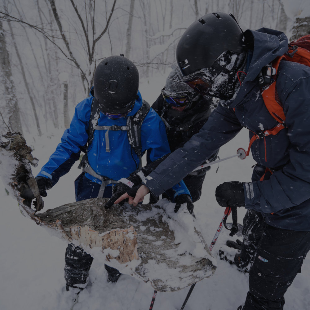 Private Snowlocals guiding 2020 - Get yourself to Japan and we will take care of the rest. Guiding on and off the mountain and a glimpse into our favorite spots around Japan.From US$ 5,000 and up per person