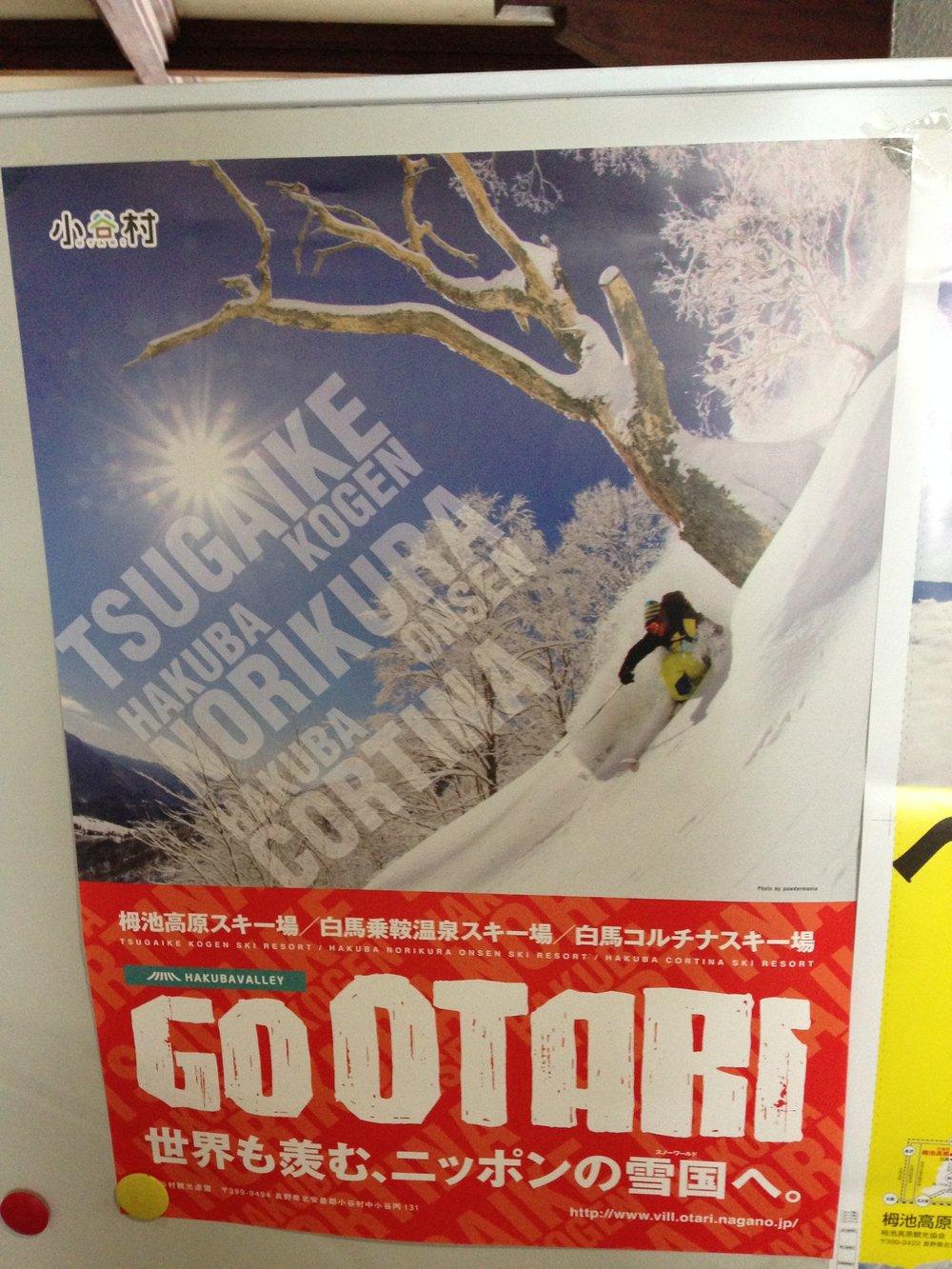 Hakuba Cortina photo.JPG