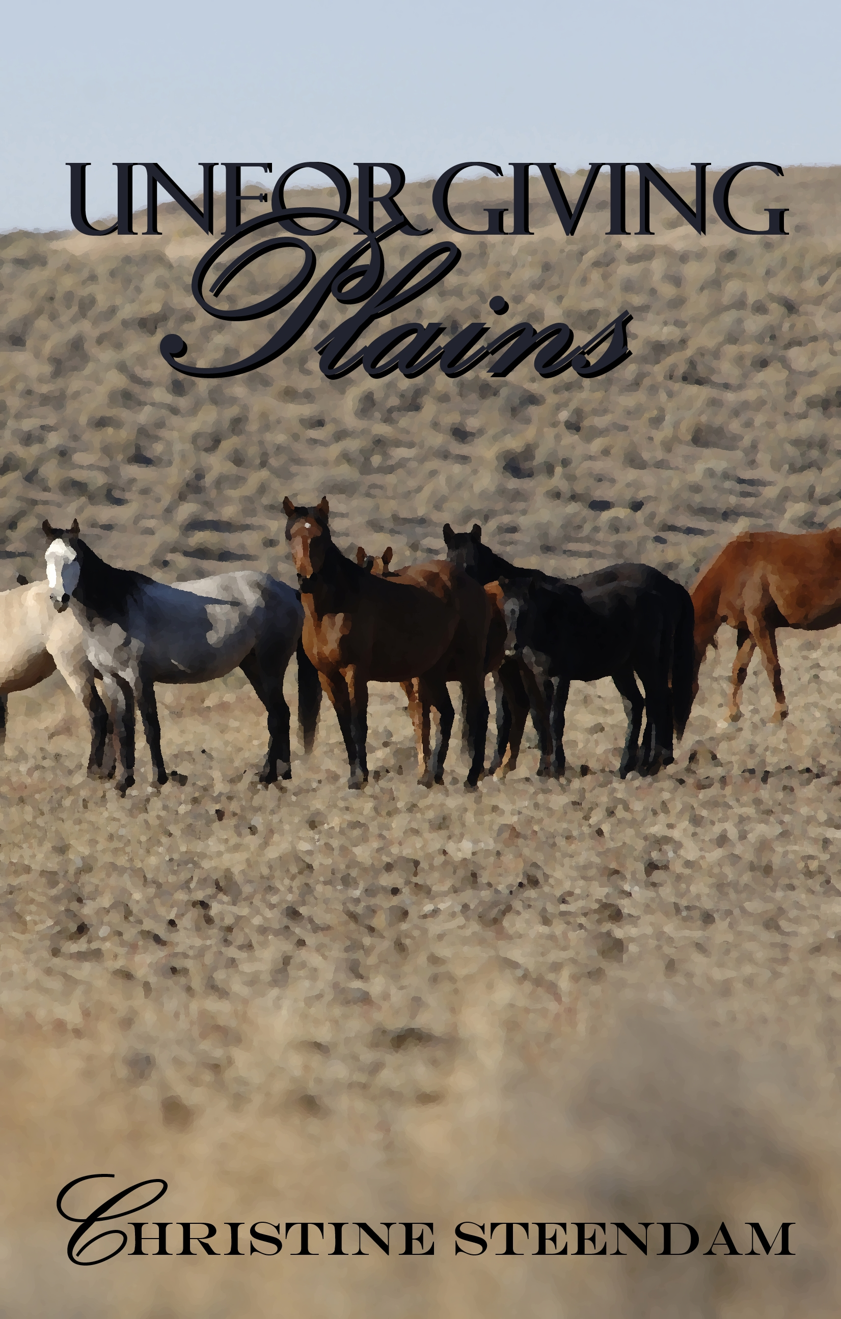 unforgiving plains cover fun