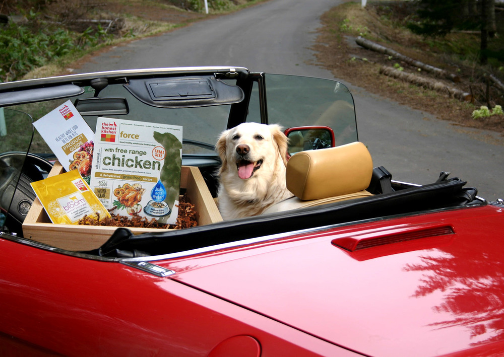 bark-williams-santa-monica-we-deliver.jpg
