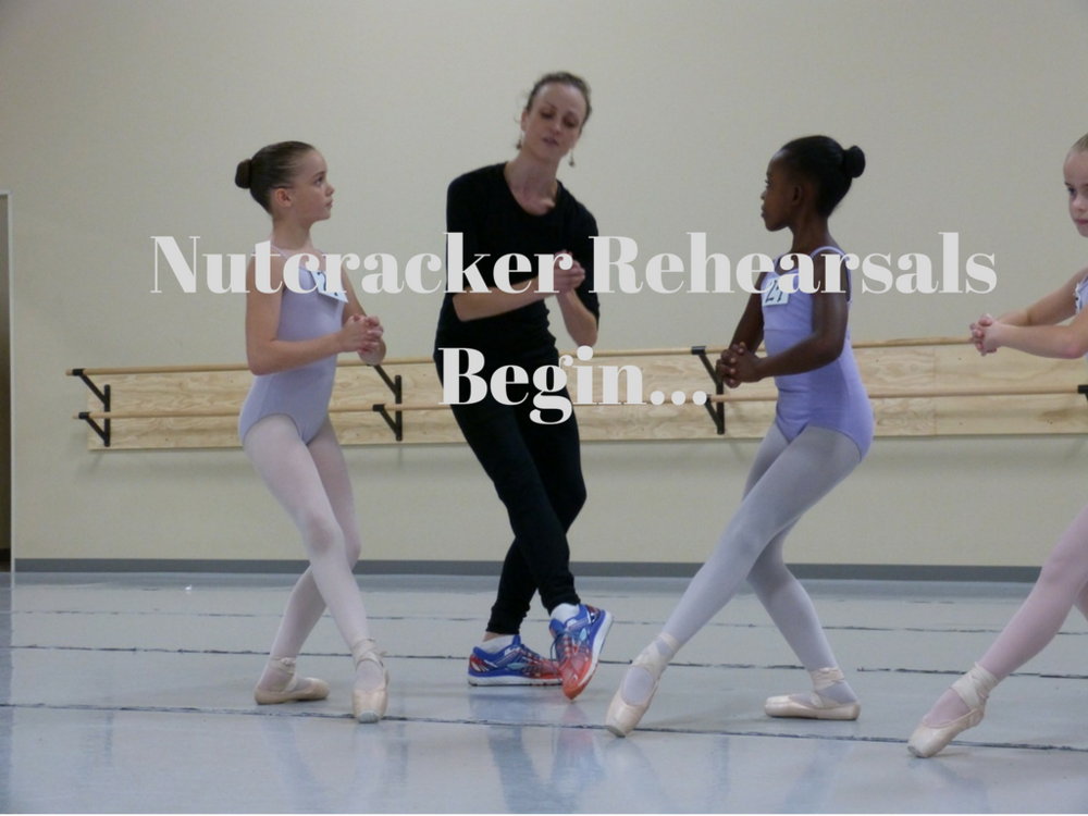 Nutcracker Begins Wide.png