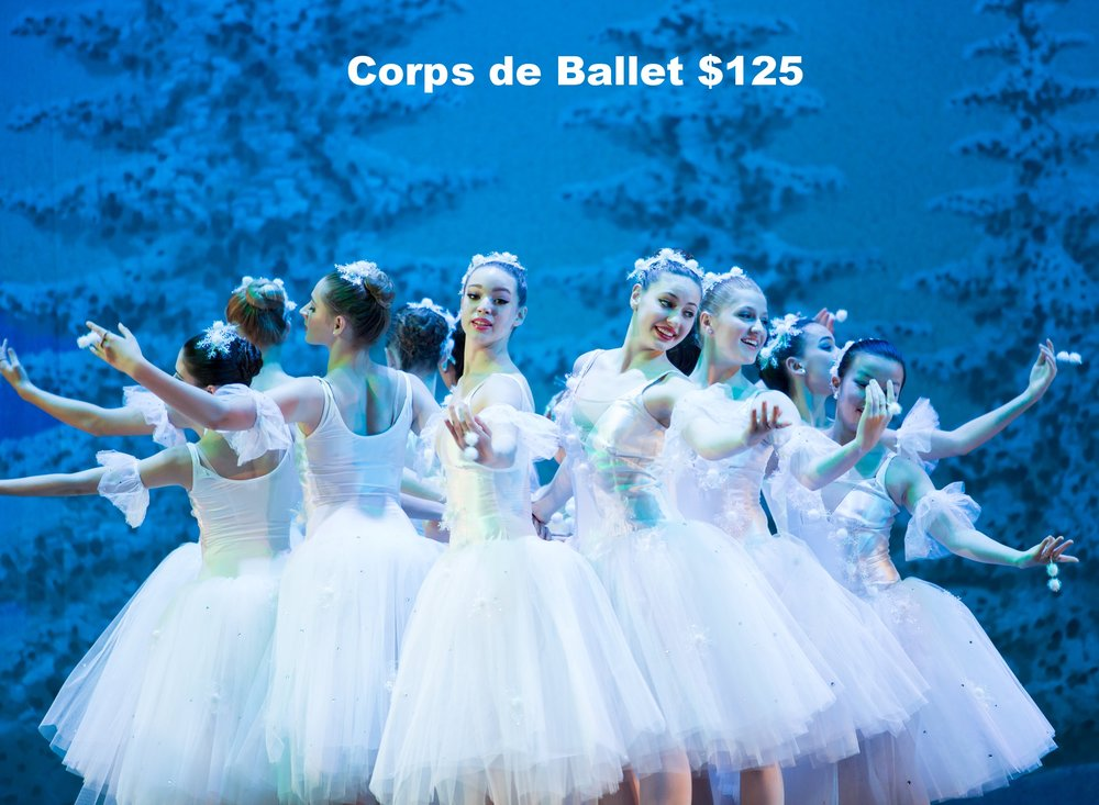 $125 will provide a pair of pointe shoes for a talented scholarship student