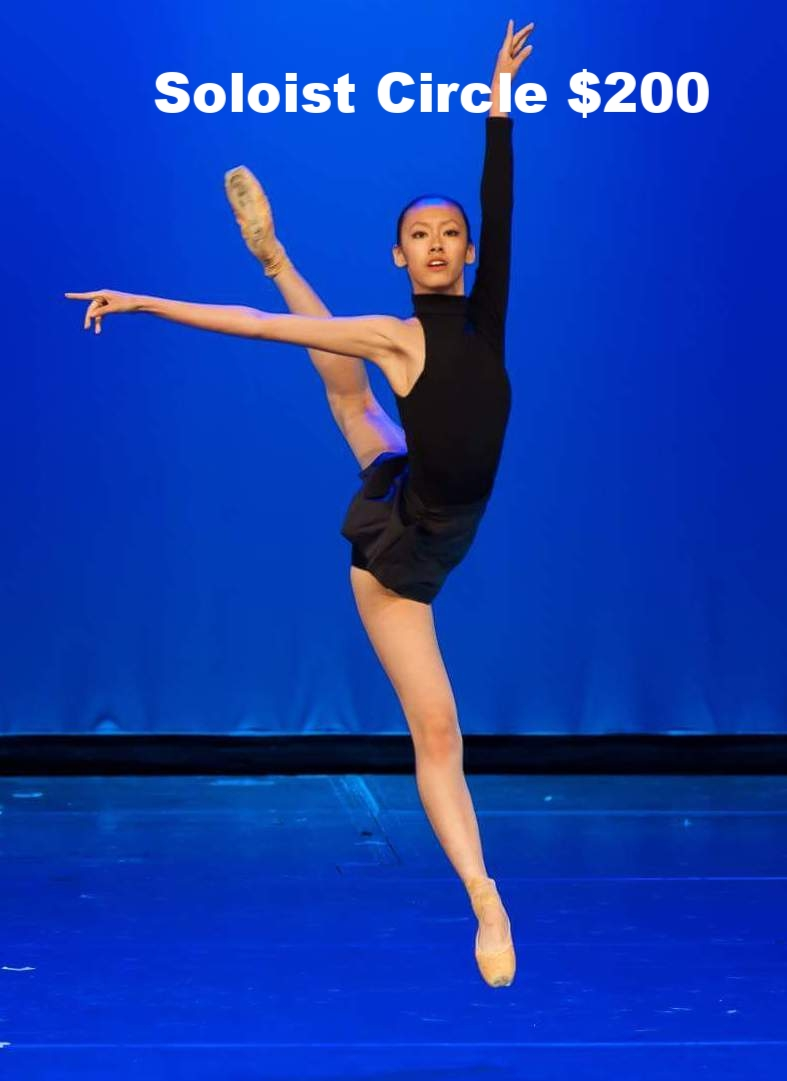 $2o0 will provide one of our dancers with a professional tutu to use in a performance