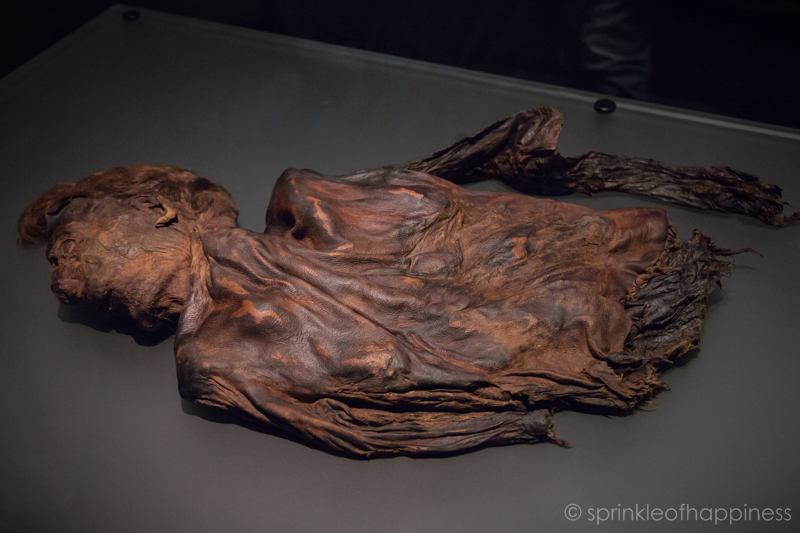 National Archaeology Museum of Ireland: bog body
