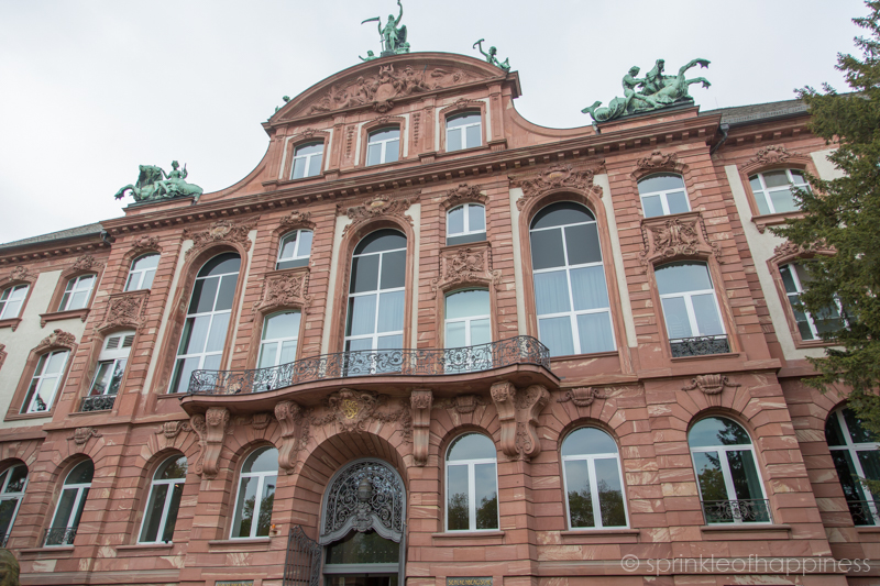 Senckenberg Naturmuseum - one of the Largest Natural History Museum in Germany