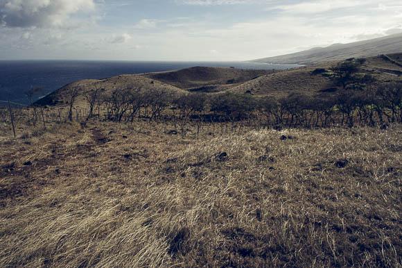 Hawaii-14.jpg