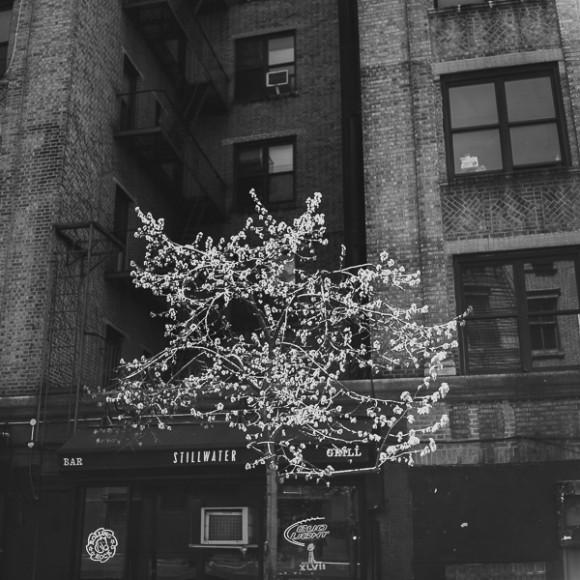 NYC93007-580x580.jpg
