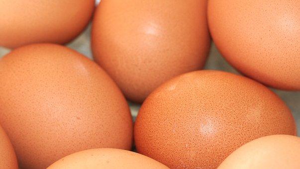 eggs-1658636__340.jpg