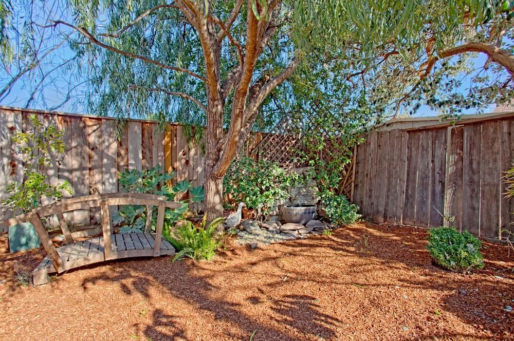 015_Backyard.jpg