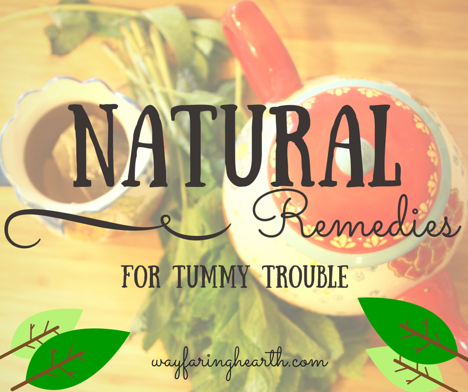 Natural remedies for tummy trouble, digestive issues, http___www.wayfaringhearth.com_