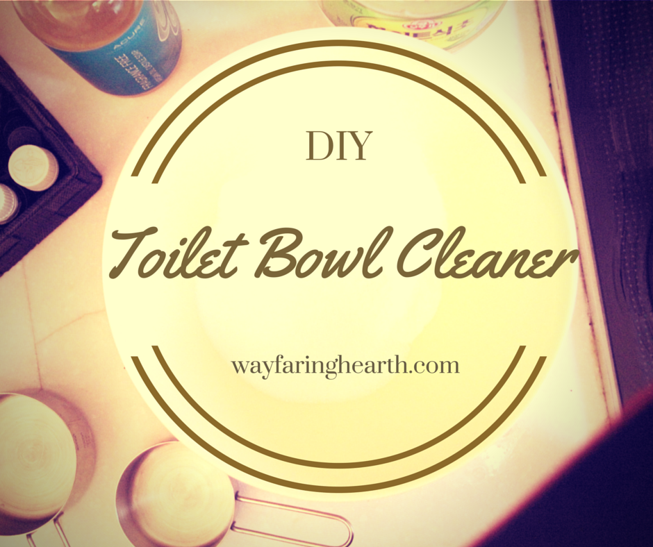 DIY Toilet Bowl Cleaner wayfaringhearth.com