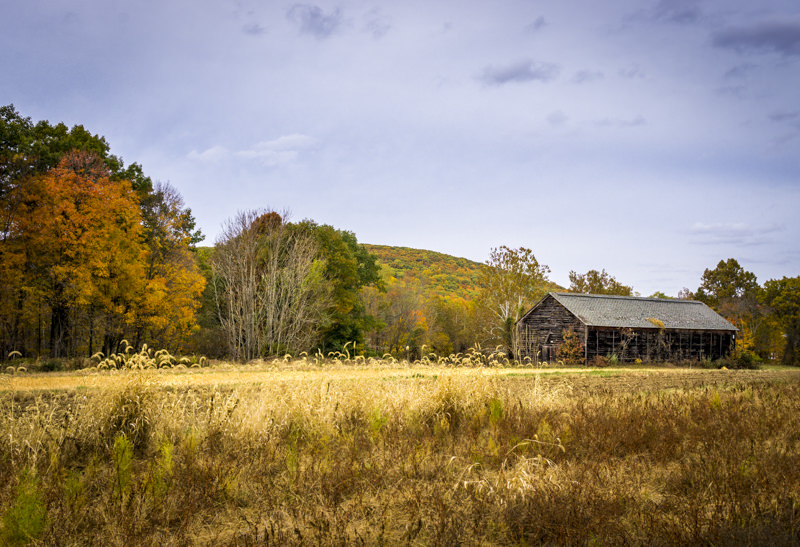 The Old Tobacco Barn
