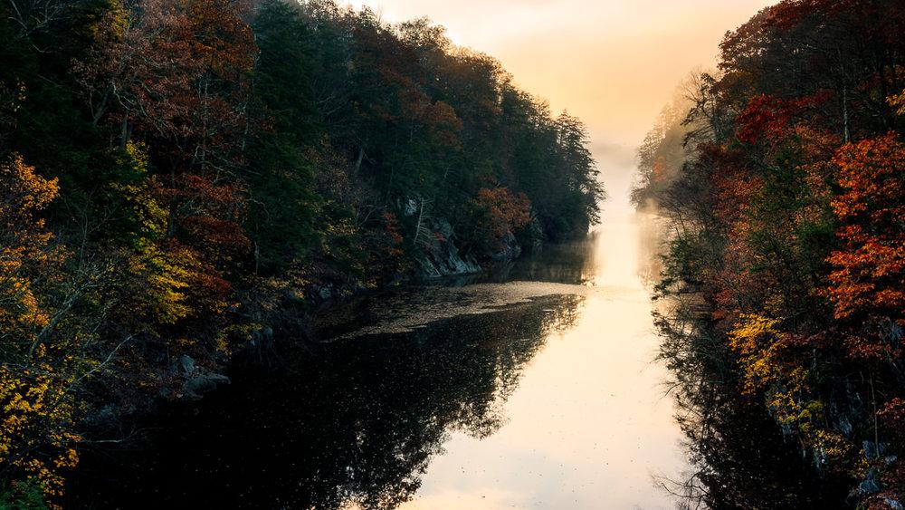 Fog and Fall Foliage