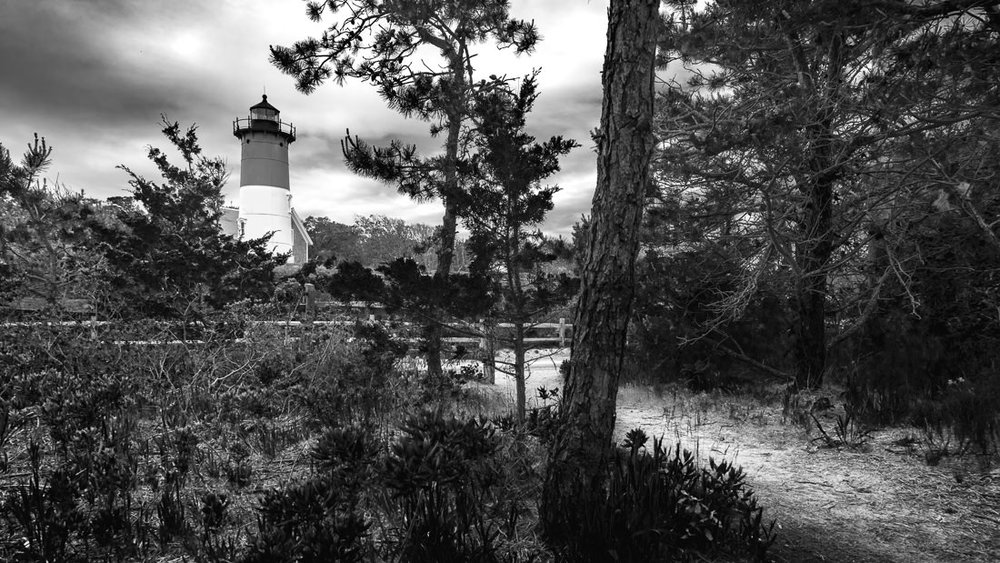 Path to Nauset Light