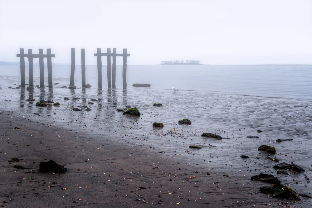 Further down the beach I go, greeted by old bones of structures long since forgotten. Posts standing stoically against the fog covered sky as a seagull ponders the scene. The sky seems to brighten as the fog slowly burns away.