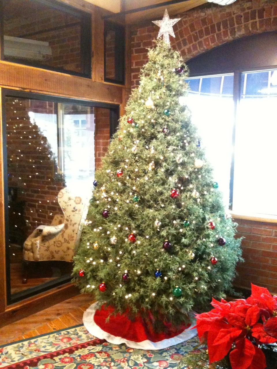 Christmas_2011_1.JPG