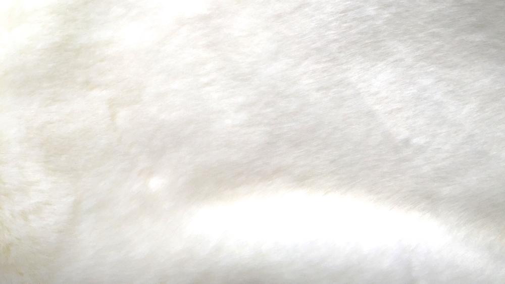 Vanoise 1633